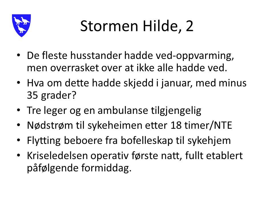 Stormen Hilde, 2 De fleste husstander hadde ved-oppvarming, men overrasket over at ikke alle hadde ved.