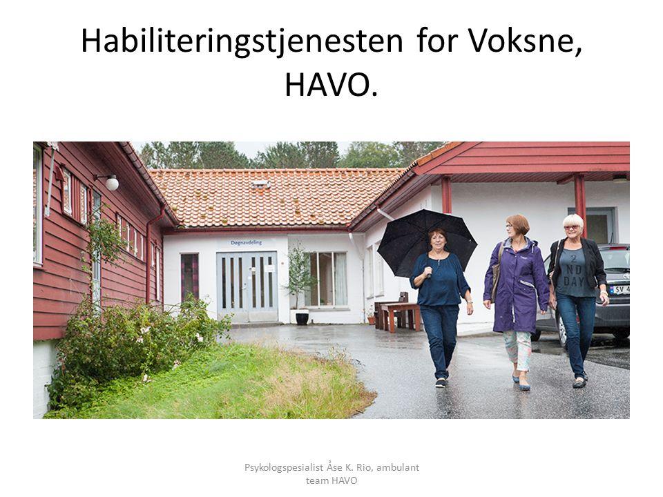 Habiliteringstjenesten for Voksne, HAVO. Psykologspesialist Åse K. Rio, ambulant team HAVO