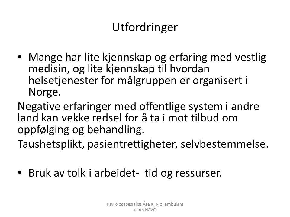 Utfordringer Mange har lite kjennskap og erfaring med vestlig medisin, og lite kjennskap til hvordan helsetjenester for målgruppen er organisert i Norge.