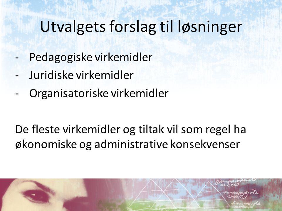 Utvalgets forslag til løsninger -Pedagogiske virkemidler -Juridiske virkemidler -Organisatoriske virkemidler De fleste virkemidler og tiltak vil som r