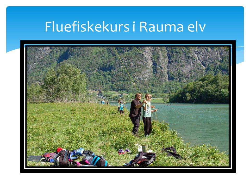 Fluefiskekurs i Rauma elv