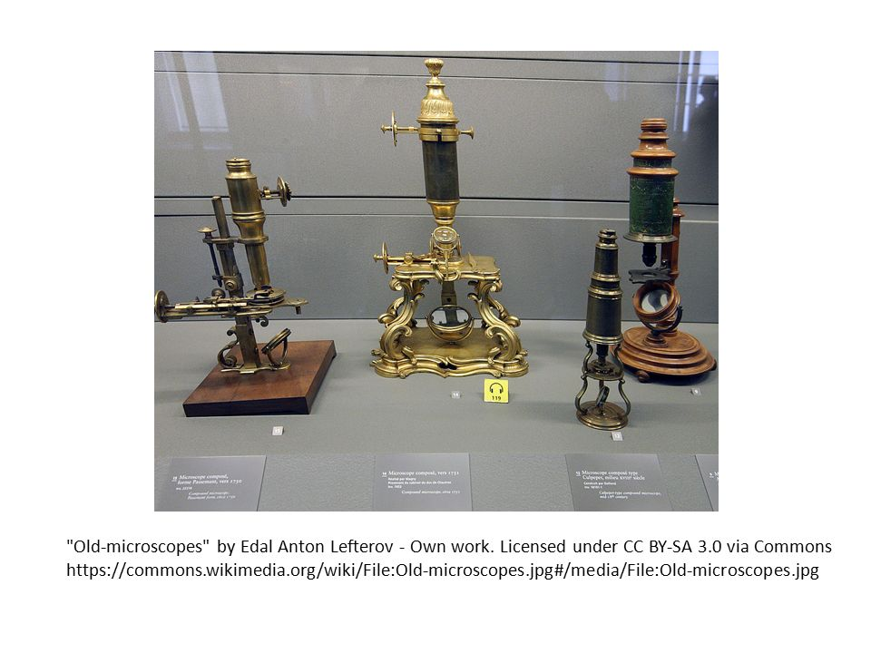Old-microscopes by Edal Anton Lefterov - Own work.