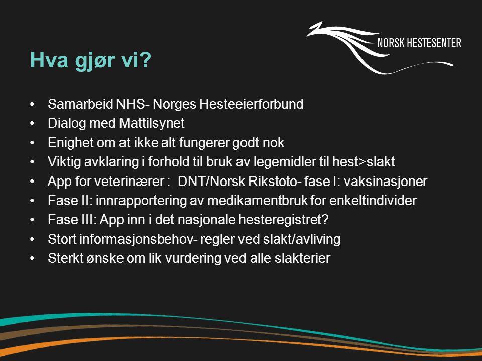 Hva gjør vi? Samarbeid NHS- Norges Hesteeierforbund Dialog med Mattilsynet Enighet om at ikke alt fungerer godt nok Viktig avklaring i forhold til bru