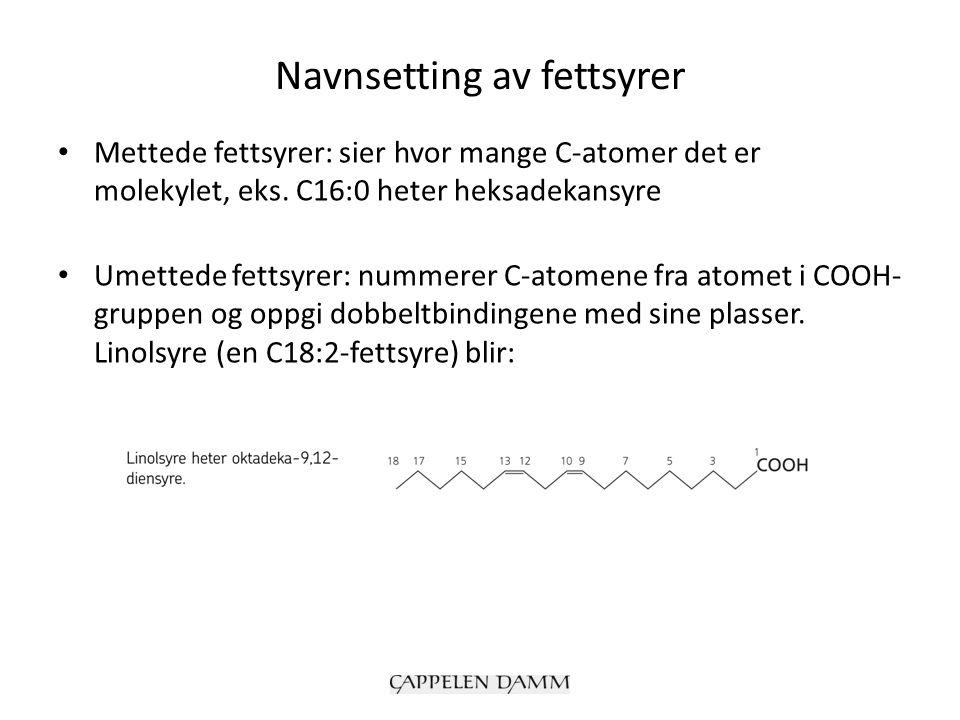 Navnsetting av fettsyrer Mettede fettsyrer: sier hvor mange C-atomer det er molekylet, eks. C16:0 heter heksadekansyre Umettede fettsyrer: nummerer C-