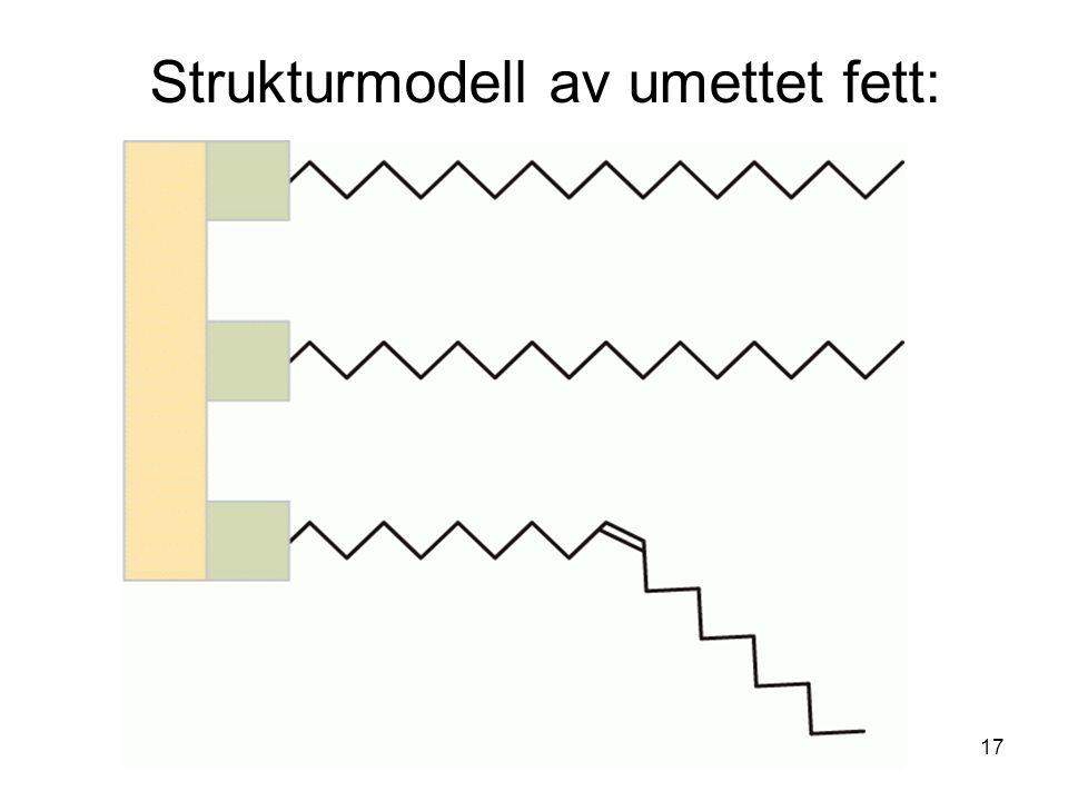 Strukturmodell av umettet fett: 17