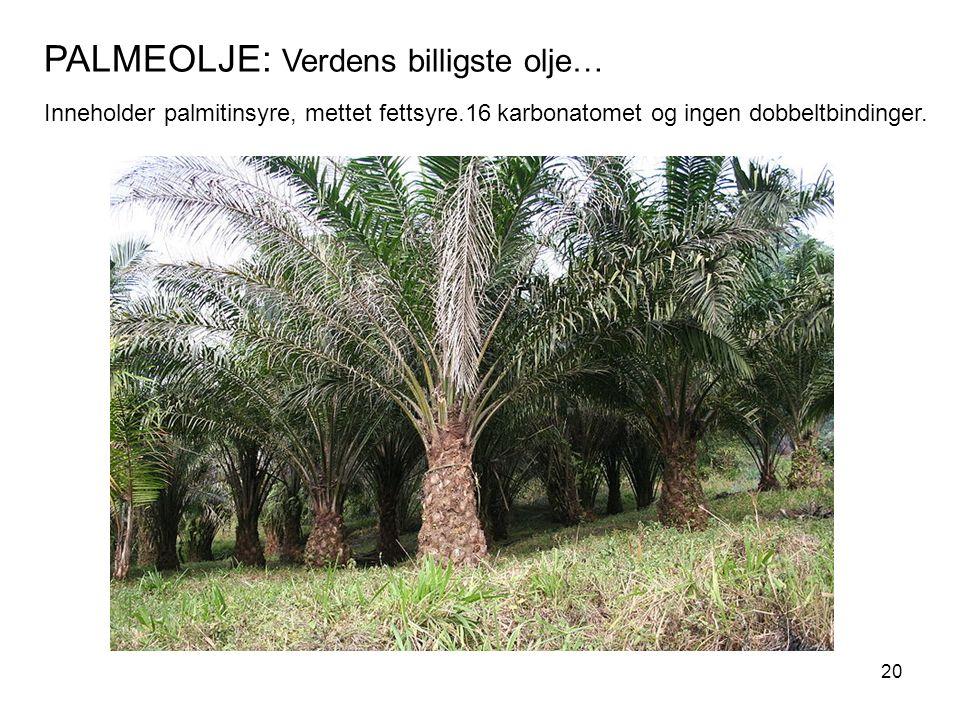 PALMEOLJE: Verdens billigste olje… Inneholder palmitinsyre, mettet fettsyre.16 karbonatomet og ingen dobbeltbindinger. 20
