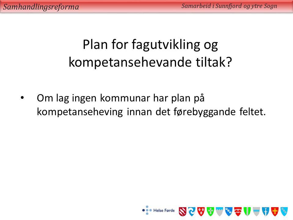 Plan for fagutvikling og kompetansehevande tiltak.