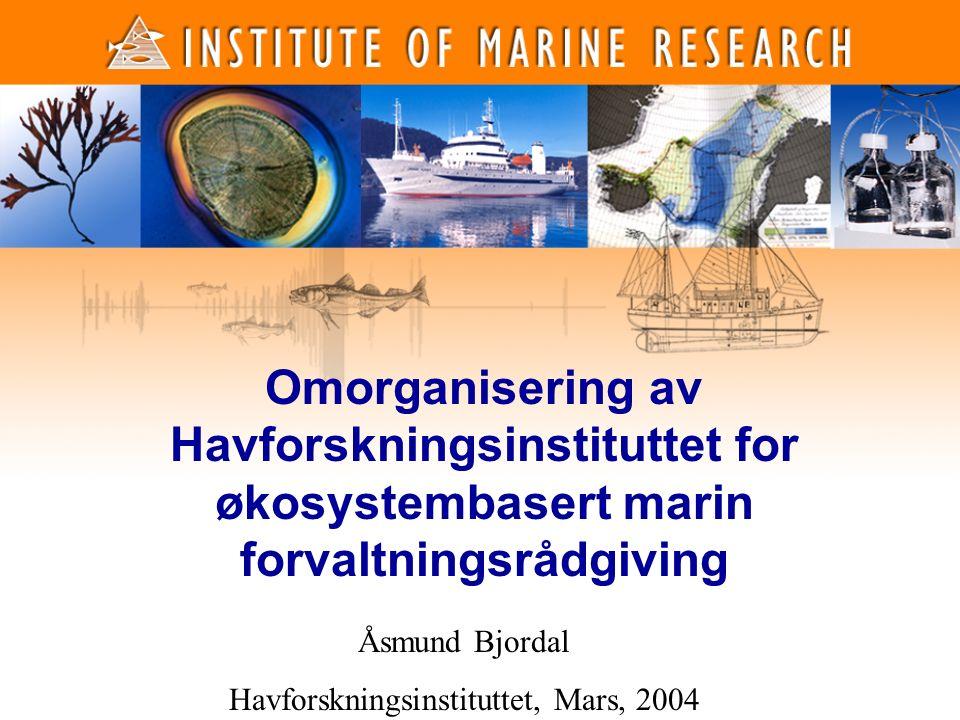1 1 Omorganisering av Havforskningsinstituttet for økosystembasert marin forvaltningsrådgiving Åsmund Bjordal Havforskningsinstituttet, Mars, 2004