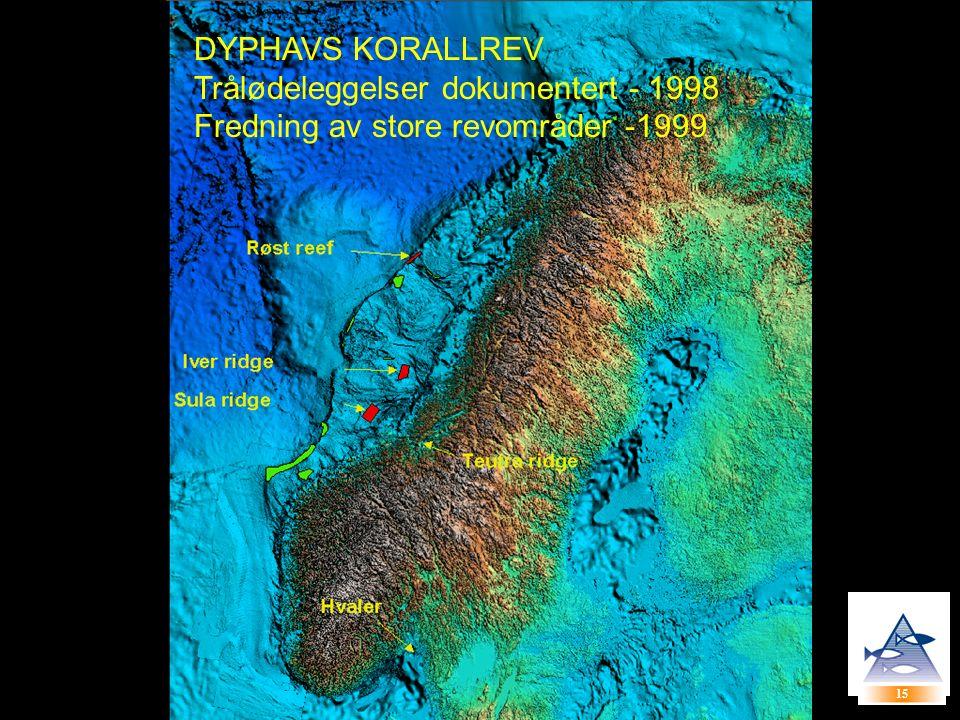 15 DYPHAVS KORALLREV Trålødeleggelser dokumentert - 1998 Fredning av store revområder -1999