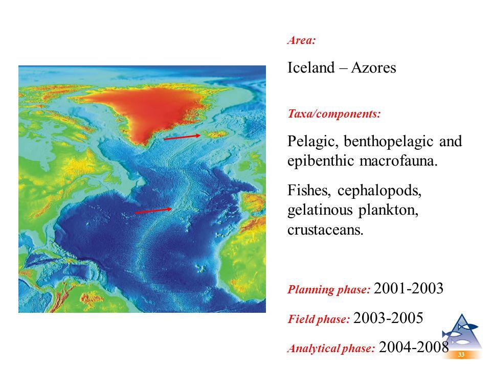33 Area: Iceland – Azores Taxa/components: Pelagic, benthopelagic and epibenthic macrofauna.