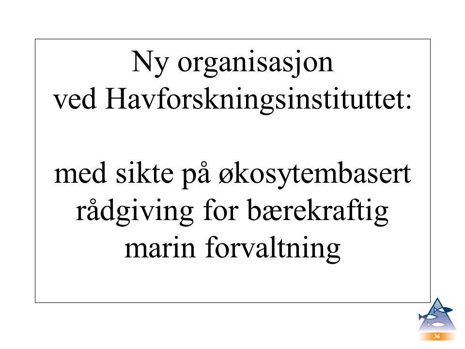 36 Ny organisasjon ved Havforskningsinstituttet: med sikte på økosytembasert rådgiving for bærekraftig marin forvaltning