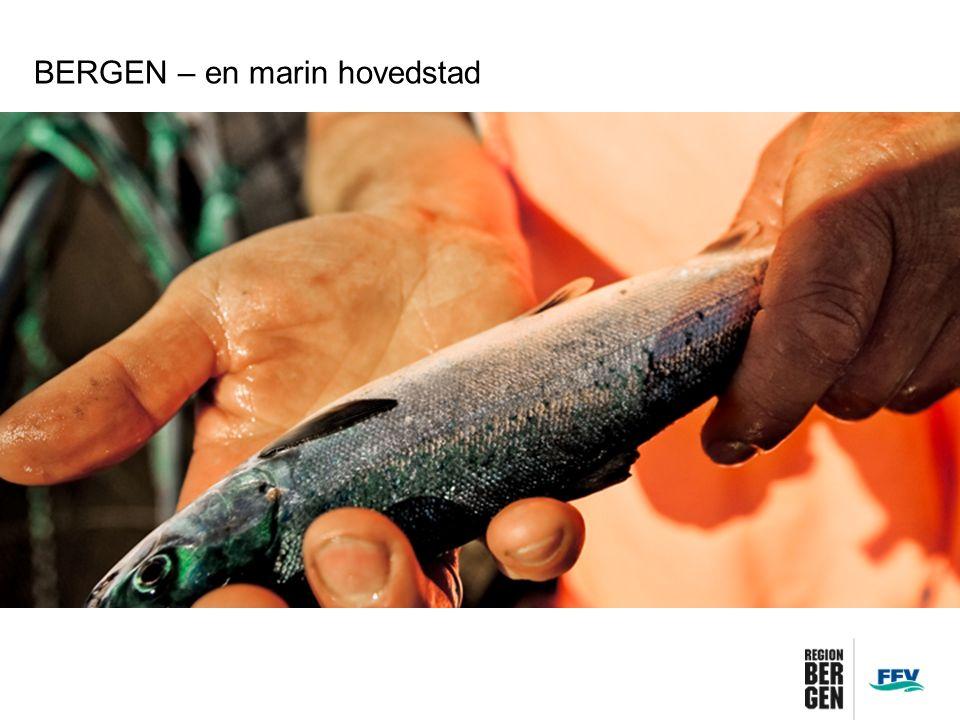BERGEN – en marin hovedstad Bergen en marin forskningshovedstad Universitetet i Bergen er Norges største marine universitet Nesten 60 prosent av marin FoU-aktivitet skjer på Vestlandet Totalt brukes det 2,8 mrd NOK på marin FoU årlig i Norge.