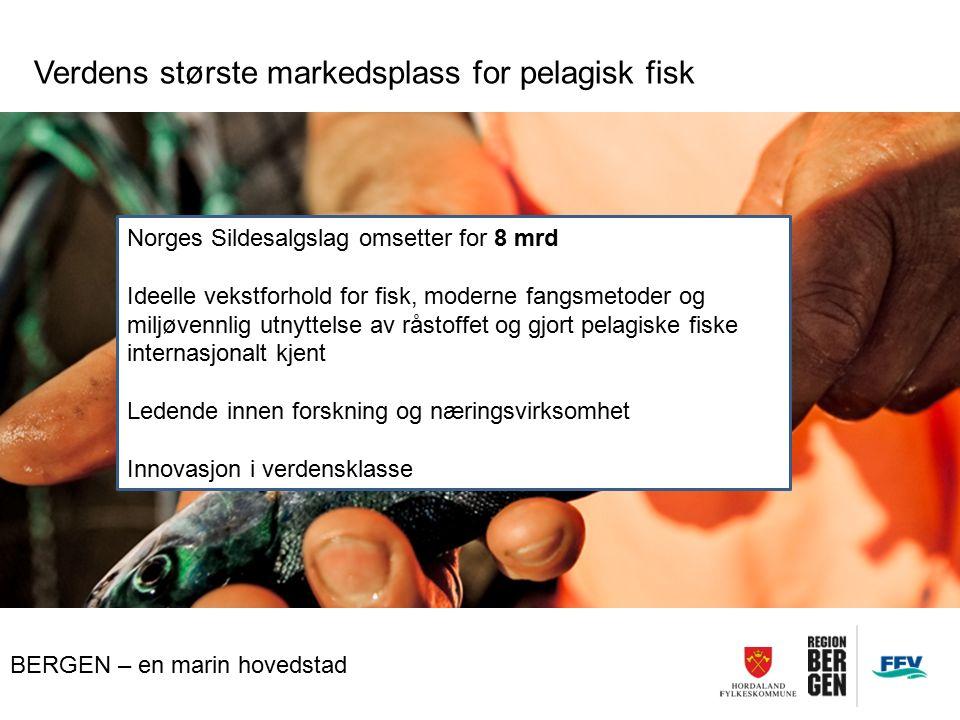 BERGEN – en marin hovedstad Verdens største markedsplass for pelagisk fisk Norges Sildesalgslag omsetter for 8 mrd Ideelle vekstforhold for fisk, moderne fangsmetoder og miljøvennlig utnyttelse av råstoffet og gjort pelagiske fiske internasjonalt kjent Ledende innen forskning og næringsvirksomhet Innovasjon i verdensklasse