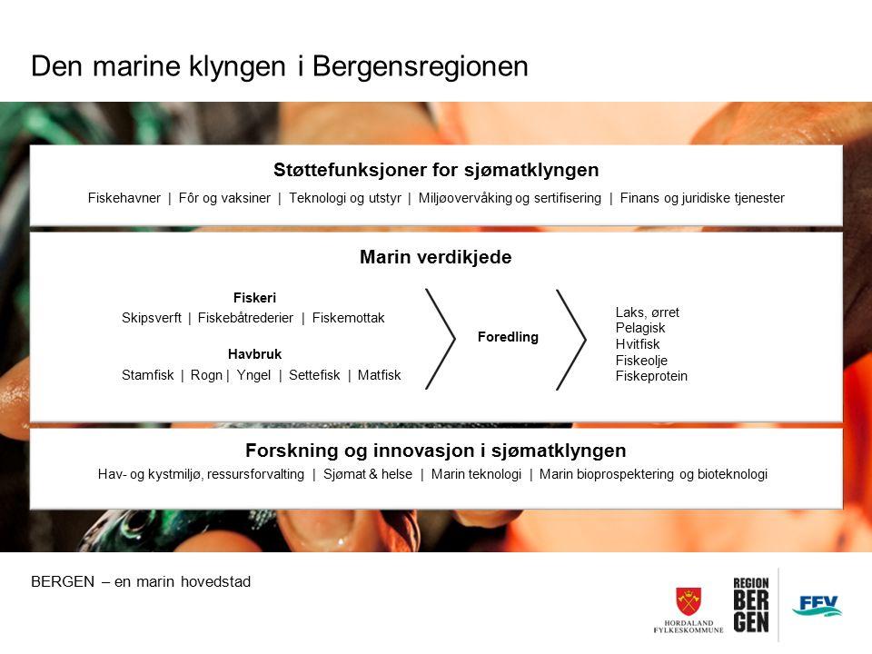 Støttefunksjoner for sjømatklyngen Fiskehavner | Fôr og vaksiner | Teknologi og utstyr | Miljøovervåking og sertifisering | Finans og juridiske tjenes