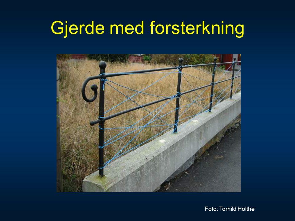 Gjerde med forsterkning Foto: Torhild Holthe