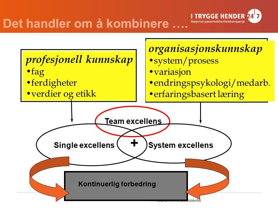 profesjonell kunnskap fag ferdigheter verdier og etikk organisasjonskunnskap system/prosess variasjon endringspsykologi/medarb. erfaringsbasert læring
