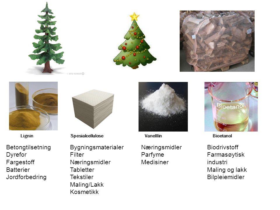 Lignin Spesialcellulose Vanelllin Bioetanol Betongtilsetning Dyrefor Fargestoff Batterier Jordforbedring Bygningsmaterialer Filter Næringsmidler Table