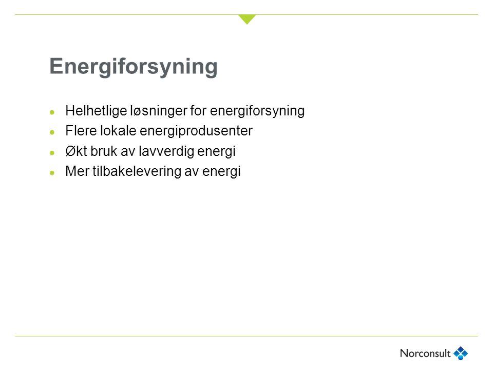 Energiforsyning ● Helhetlige løsninger for energiforsyning ● Flere lokale energiprodusenter ● Økt bruk av lavverdig energi ● Mer tilbakelevering av en