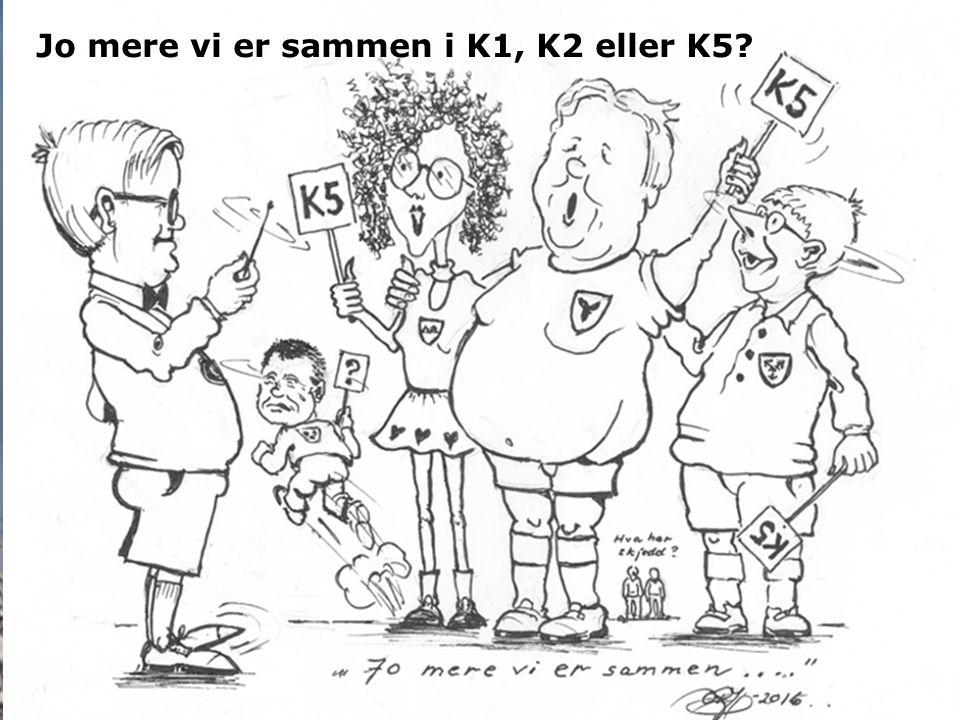 Informasjonsmøte 3. mars 2016 Rådmann Tor Sommerseth RÅDMANN Jo mere vi er sammen i K1, K2 eller K5?