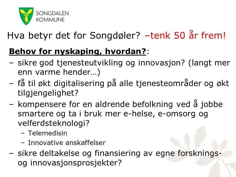 Behov for nyskaping, hvordan?: –sikre god tjenesteutvikling og innovasjon? (langt mer enn varme hender…) –få til økt digitalisering på alle tjenesteom