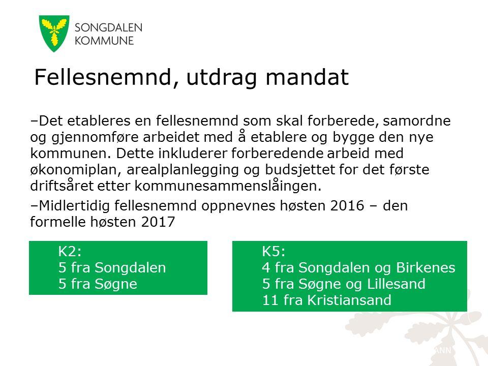 kristiansand.kommune.no –Det etableres en fellesnemnd som skal forberede, samordne og gjennomføre arbeidet med å etablere og bygge den nye kommunen.