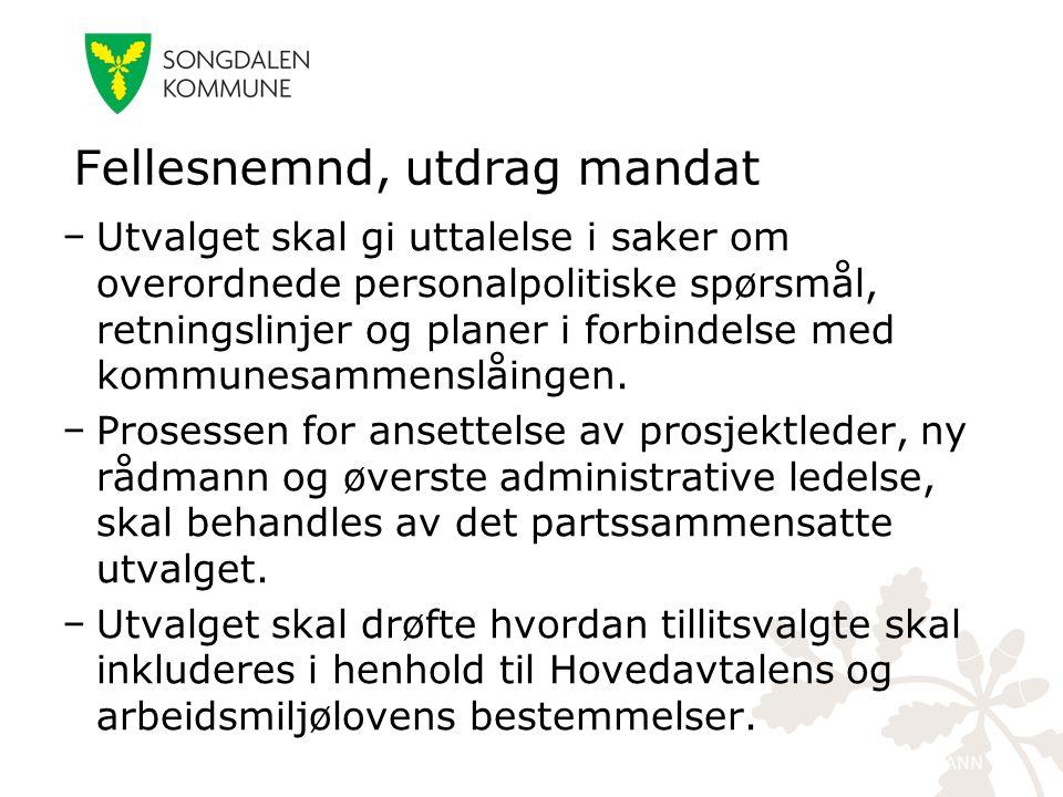 kristiansand.kommune.no − Utvalget skal gi uttalelse i saker om overordnede personalpolitiske spørsmål, retningslinjer og planer i forbindelse med kommunesammenslåingen.