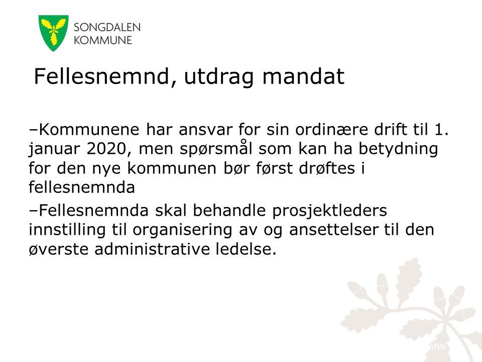 kristiansand.kommune.no –Kommunene har ansvar for sin ordinære drift til 1. januar 2020, men spørsmål som kan ha betydning for den nye kommunen bør fø