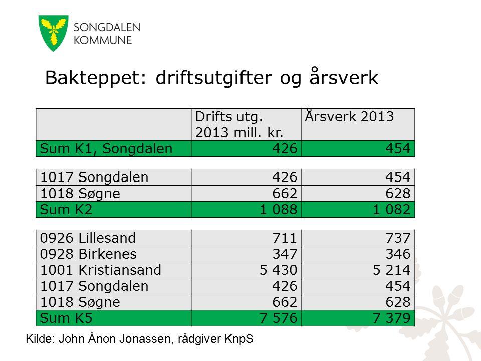 Bakteppet: driftsutgifter og årsverk 0926 Lillesand711737 0928 Birkenes347346 1001 Kristiansand5 4305 214 1017 Songdalen426454 1018 Søgne662628 Sum K5