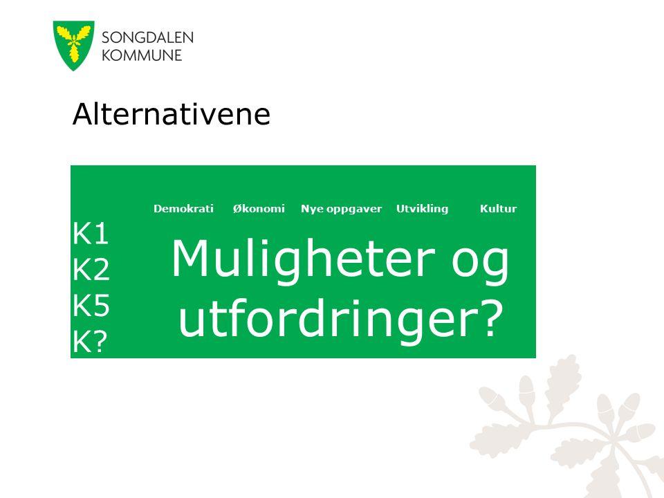 Alternativene DemokratiØkonomiNye oppgaverUtviklingKultur K1 Muligheter og utfordringer? K2 K5 K?