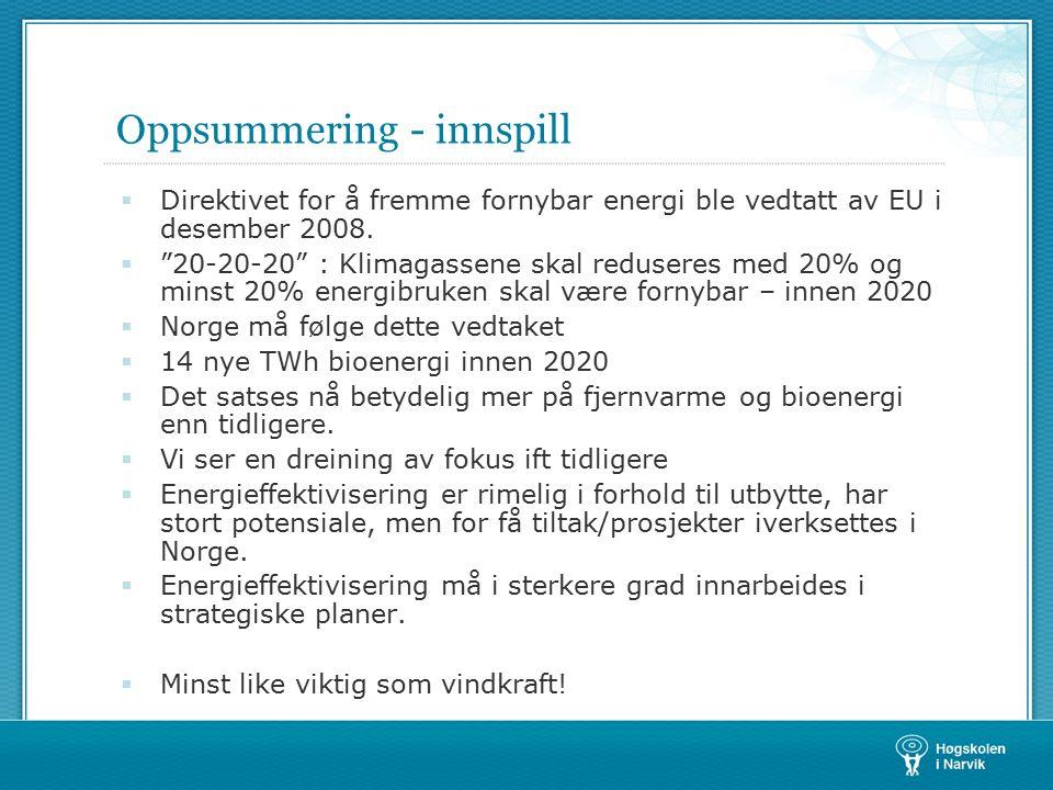 Oppsummering - innspill  Direktivet for å fremme fornybar energi ble vedtatt av EU i desember 2008.