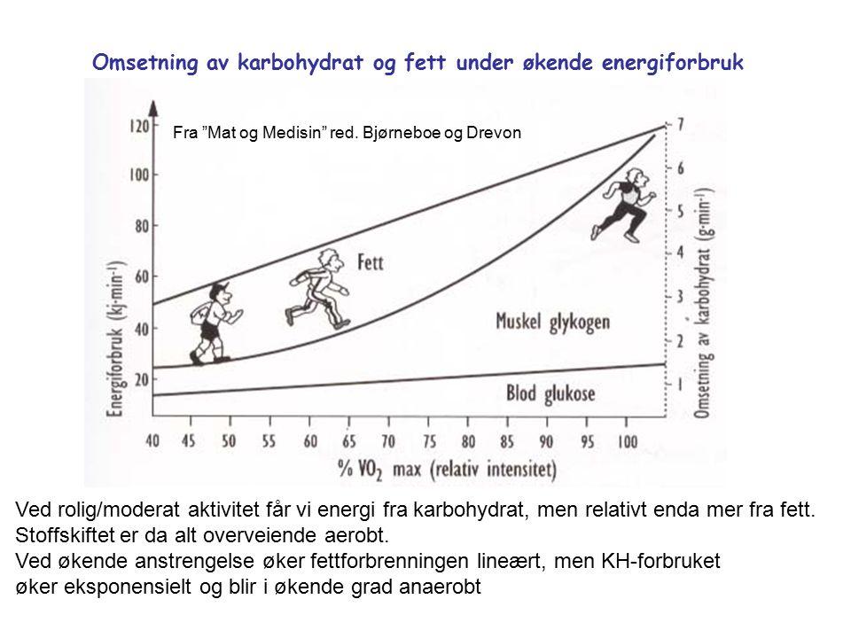Omsetning av karbohydrat og fett under økende energiforbruk Ved rolig/moderat aktivitet får vi energi fra karbohydrat, men relativt enda mer fra fett.