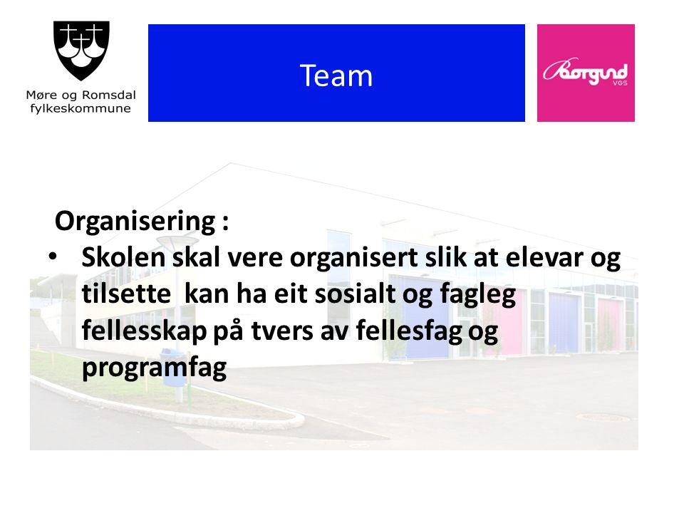 Borgund vgs Team