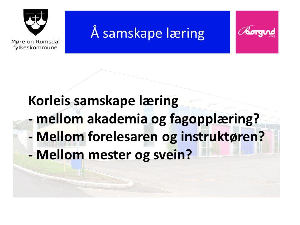 Korleis samskape læring - mellom akademia og fagopplæring.