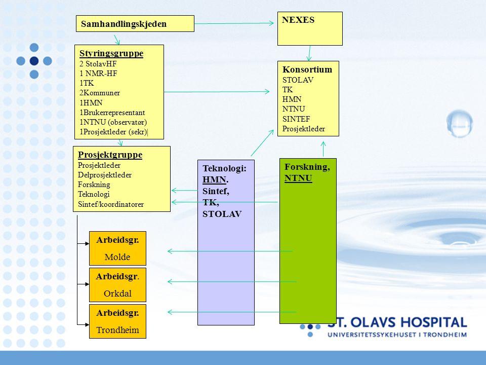 Styringsgruppe 2 StolavHF 1 NMR-HF 1TK 2Kommuner 1HMN 1Brukerrepresentant 1NTNU (observatør) 1Prosjektleder (sekr)| NEXES Prosjektgruppe Prosjektleder Delprosjektleder Forskning Teknologi Sintef/koordinatorer Arbeidsgr.