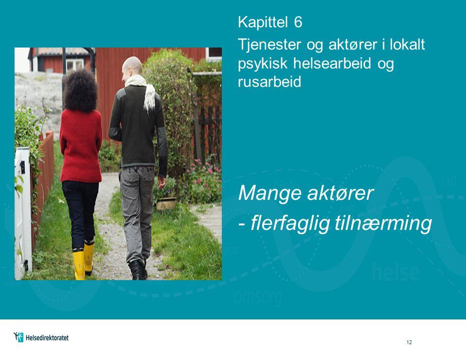 Kapittel 6 Tjenester og aktører i lokalt psykisk helsearbeid og rusarbeid Mange aktører - flerfaglig tilnærming 12