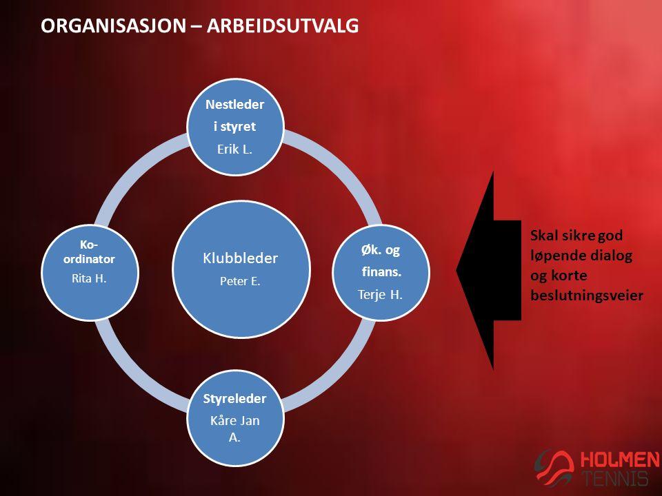 ORGANISASJON – ARBEIDSUTVALG Klubbleder Peter E. Nestleder i styret Erik L.