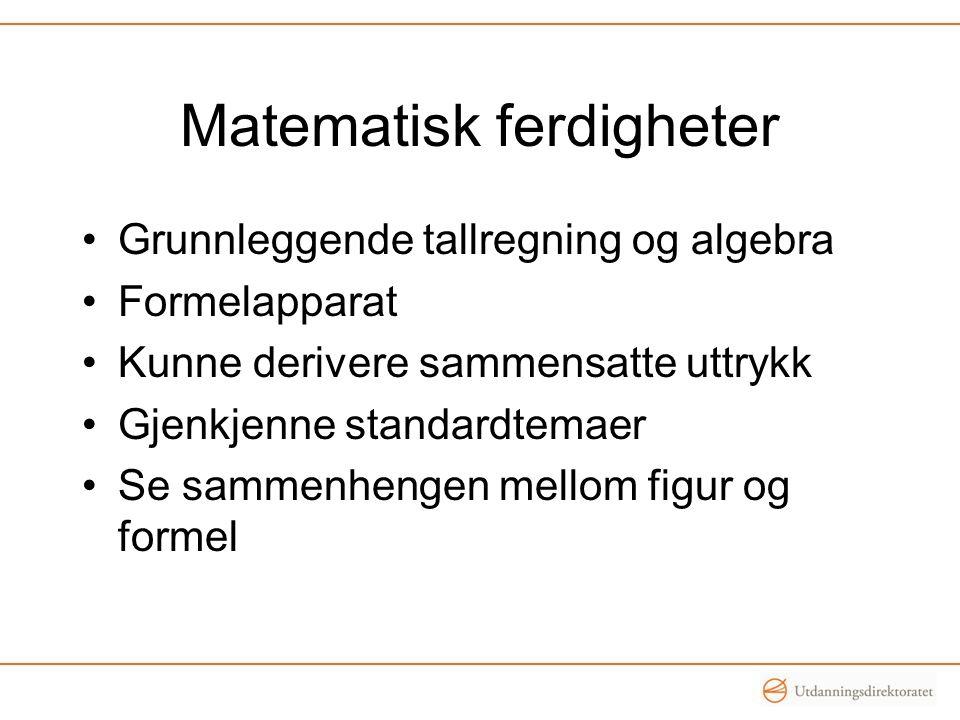 Matematisk ferdigheter Grunnleggende tallregning og algebra Formelapparat Kunne derivere sammensatte uttrykk Gjenkjenne standardtemaer Se sammenhengen mellom figur og formel