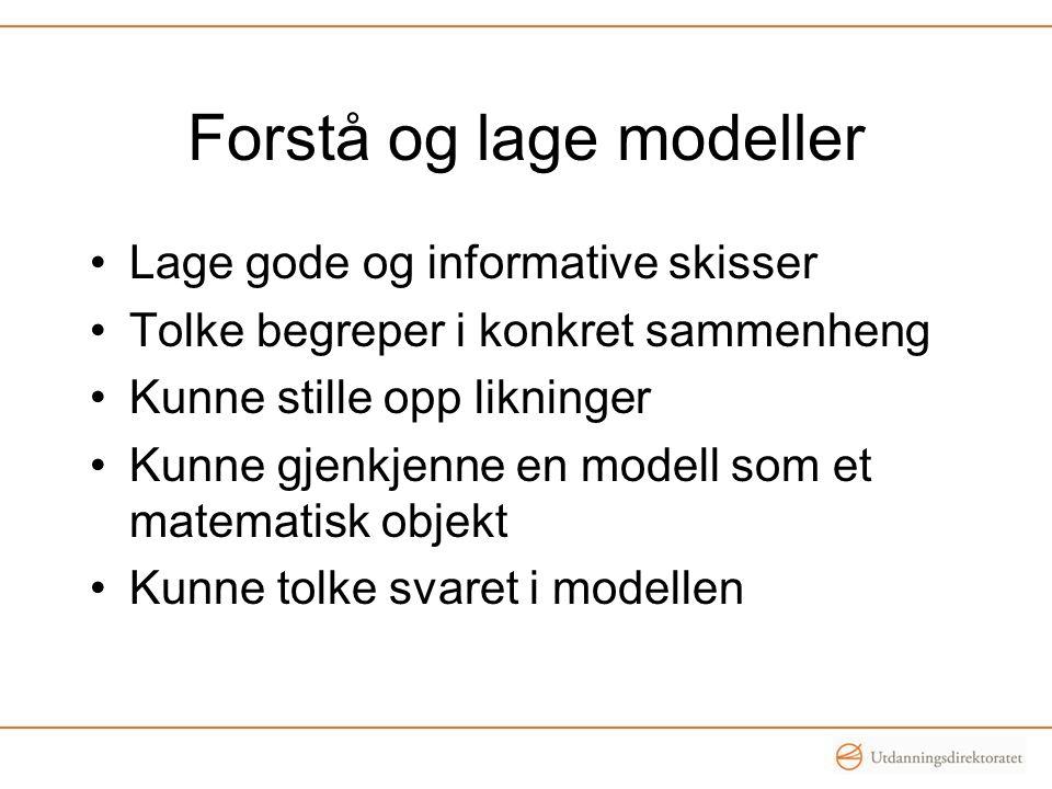 Forstå og lage modeller Lage gode og informative skisser Tolke begreper i konkret sammenheng Kunne stille opp likninger Kunne gjenkjenne en modell som et matematisk objekt Kunne tolke svaret i modellen