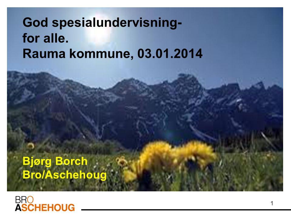 1 God spesialundervisning- for alle. Rauma kommune, 03.01.2014 Bjørg Borch Bro/Aschehoug