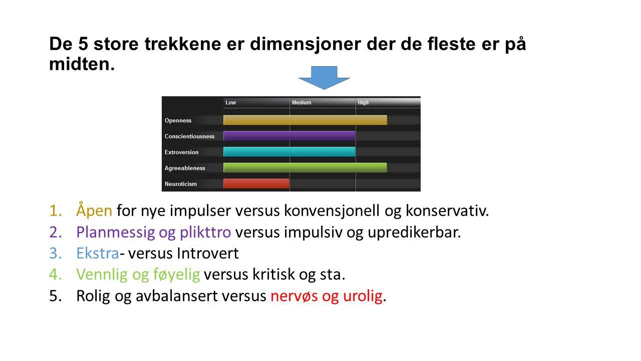 De 5 store trekkene er dimensjoner der de fleste er på midten. 1.Åpen for nye impulser versus konvensjonell og konservativ. 2.Planmessig og plikttro v