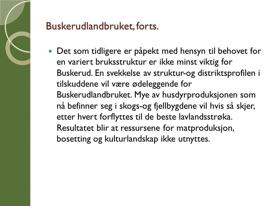 Buskerudlandbruket, forts. Det som tidligere er påpekt med hensyn til behovet for en variert bruksstruktur er ikke minst viktig for Buskerud. En svekk