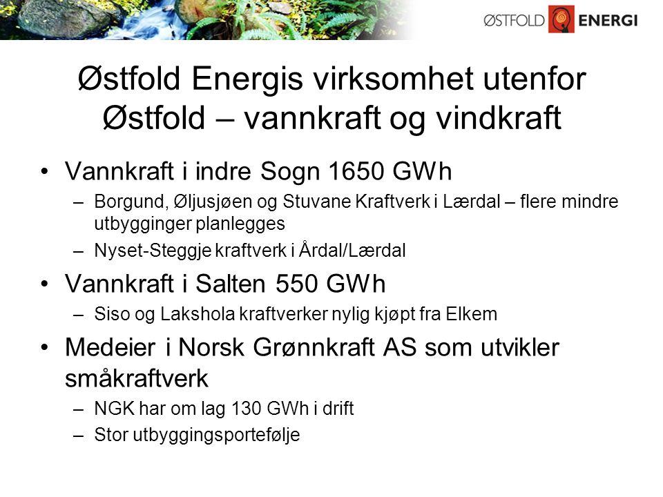 Østfold Energis virksomhet utenfor Østfold – vannkraft og vindkraft Vannkraft i indre Sogn 1650 GWh –Borgund, Øljusjøen og Stuvane Kraftverk i Lærdal – flere mindre utbygginger planlegges –Nyset-Steggje kraftverk i Årdal/Lærdal Vannkraft i Salten 550 GWh –Siso og Lakshola kraftverker nylig kjøpt fra Elkem Medeier i Norsk Grønnkraft AS som utvikler småkraftverk –NGK har om lag 130 GWh i drift –Stor utbyggingsportefølje