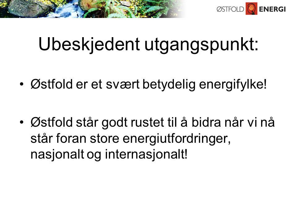 Ubeskjedent utgangspunkt: Østfold er et svært betydelig energifylke.