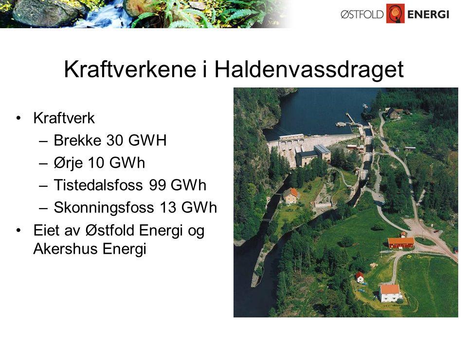 Energigjenvinning fra avfall Anlegg i Fredrikstad –Frevar – energi til industrien på Øra –Hafslund Miljøenergi – energi til fjernvarme og industri Anlegg i Sarpsborg –Østfold Energi – energi til Borregaard –Hafslund Miljøenergi – energi til Borregaard Anlegg i Rakkestad –Østfold Energi – energi til industri og fjernvarme Samlet kapasitet over 300 000 tonn avfall og omtrent 900 GWh varme til erstatning for tung fyringsolje