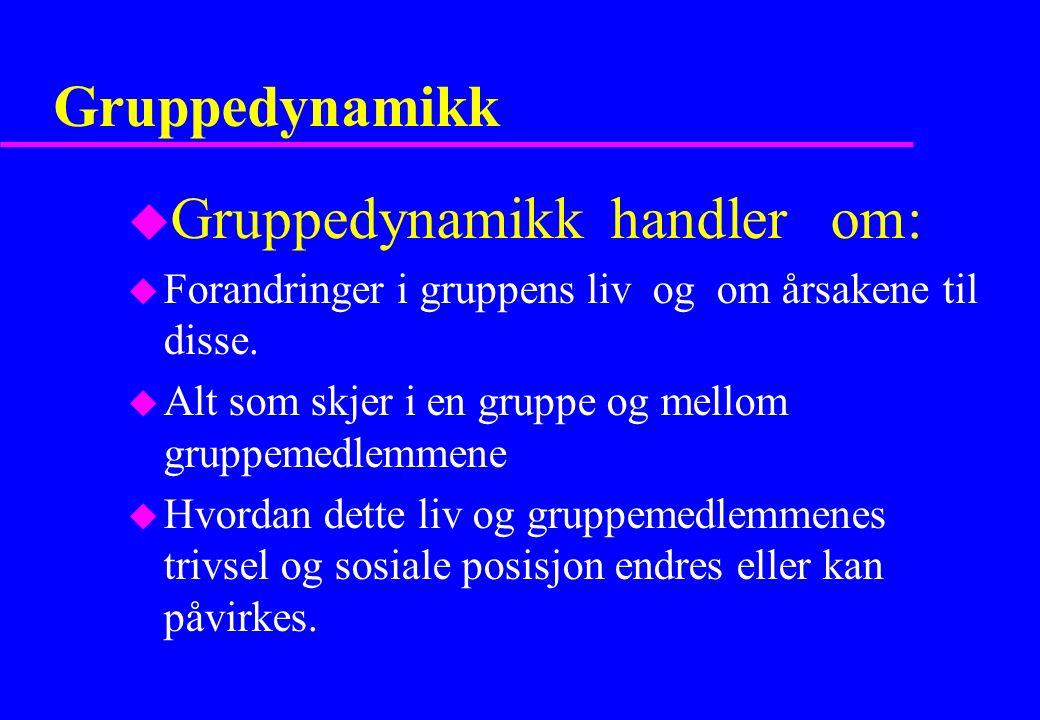 Gruppedynamikk u Gruppedynamikk handler om: u Forandringer i gruppens liv og om årsakene til disse. u Alt som skjer i en gruppe og mellom gruppemedlem