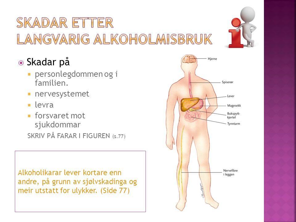 Alkoholikarar lever kortare enn andre, på grunn av sjølvskadinga og meir utstatt for ulykker.