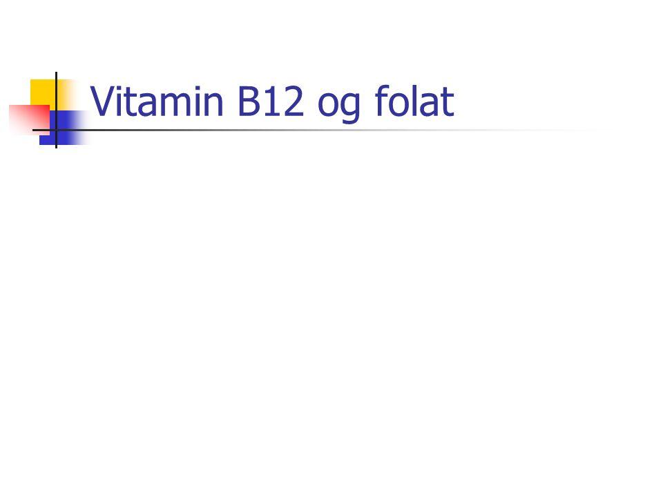 Vitamin B12 og folat