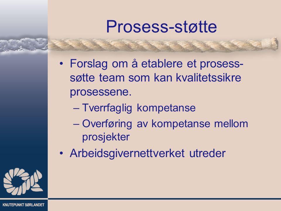 Prosess-støtte Forslag om å etablere et prosess- søtte team som kan kvalitetssikre prosessene.