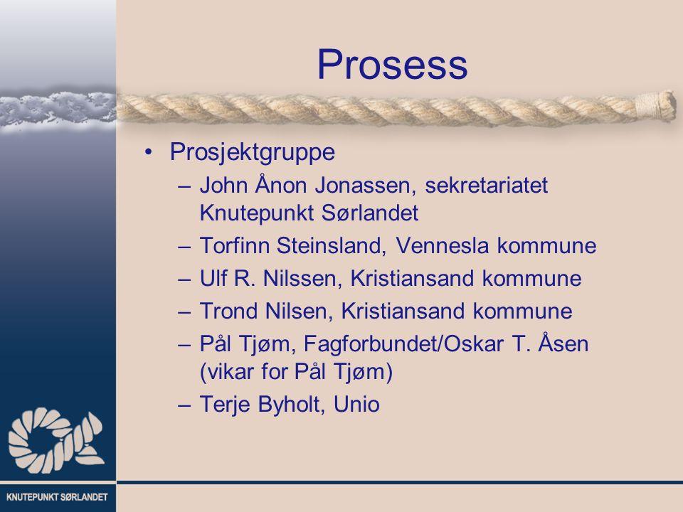 Prosess Prosjektgruppe –John Ånon Jonassen, sekretariatet Knutepunkt Sørlandet –Torfinn Steinsland, Vennesla kommune –Ulf R.
