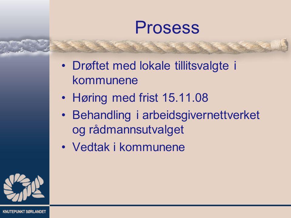 Prosess Drøftet med lokale tillitsvalgte i kommunene Høring med frist 15.11.08 Behandling i arbeidsgivernettverket og rådmannsutvalget Vedtak i kommunene